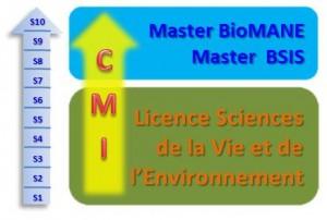 CMI-Masters_LSVE